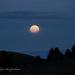 Good morning, moon! by sschertenleib