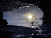 29th Jan 2021 - Moon