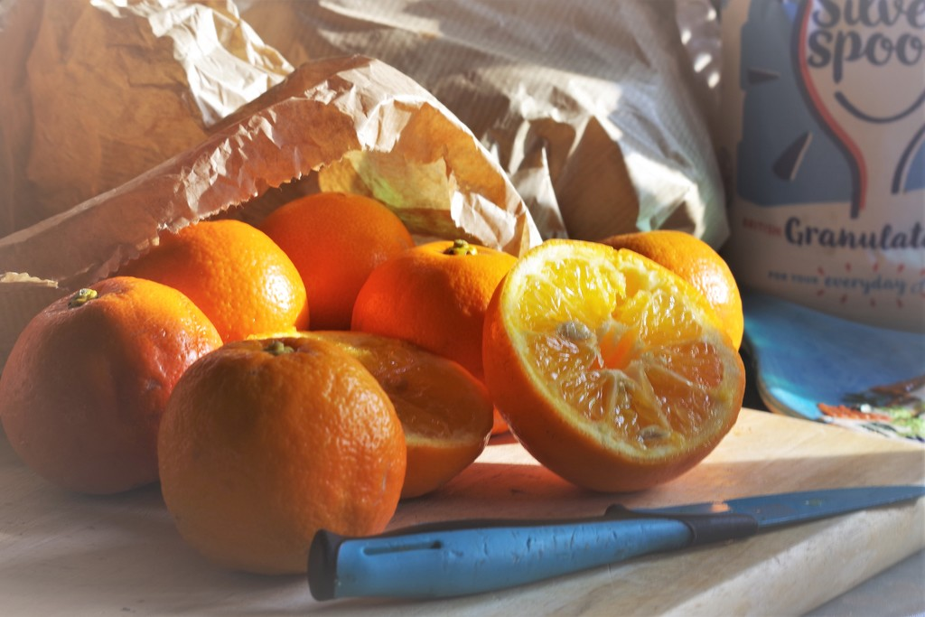 A Preserved Beam of Citrus Sunshine  by 30pics4jackiesdiamond