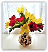 29th Jan 2021 - Spring tulips