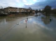 29th Jan 2021 - Flooded again