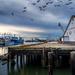 Steveston Waterfront.  by cdcook48