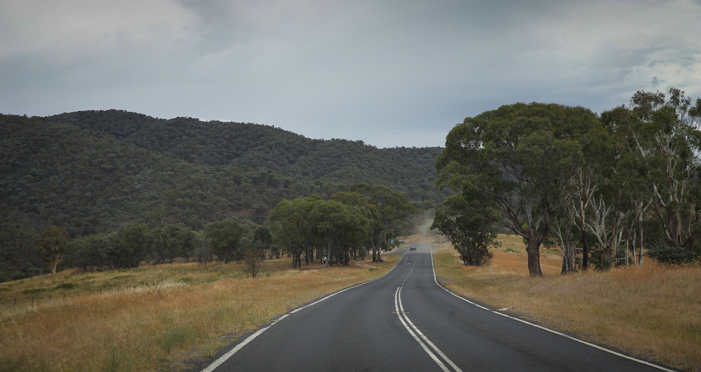 Open road by sharandrah
