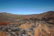 30th Jan 2021 - Desert view