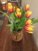 30th Jan 2021 - Early tulips