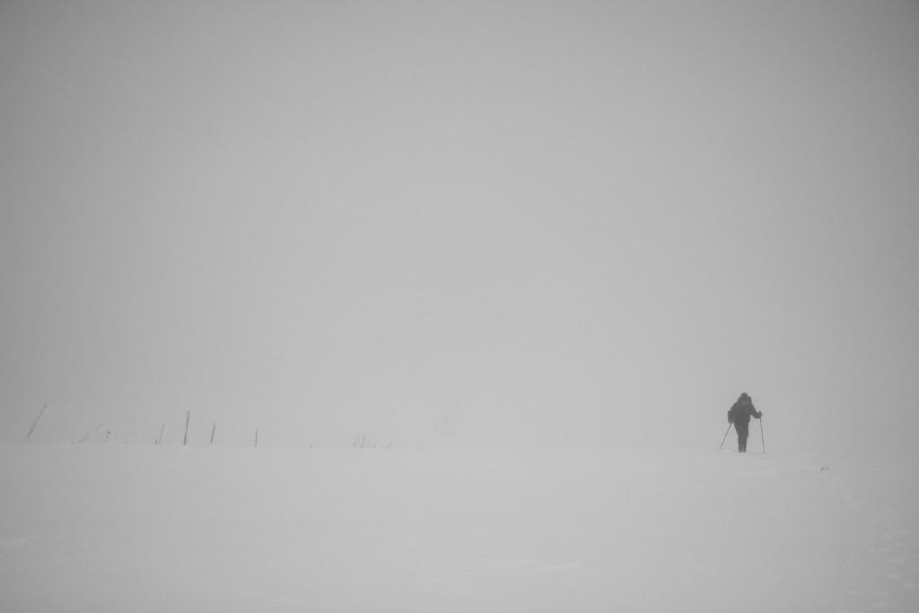 Misty on High! by jamibann