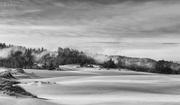 30th Jan 2021 - Fog At Dellenbach Dunes