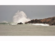 31st Jan 2021 - Storm Justine - yesterday afternoon