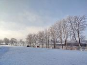 26th Jan 2021 - Winter Landscape