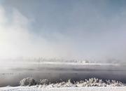 27th Jan 2021 - Fog & Snow