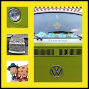 31st Jan 2021 - Ermintrude the VW