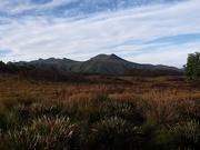 26th Jan 2021 - Tasmanian Wilderness