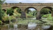 30th Jan 2021 - Australia's oldest bridge..