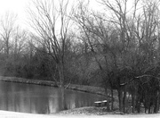 1st Feb 2021 - A Winter Day