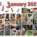 J-Word January