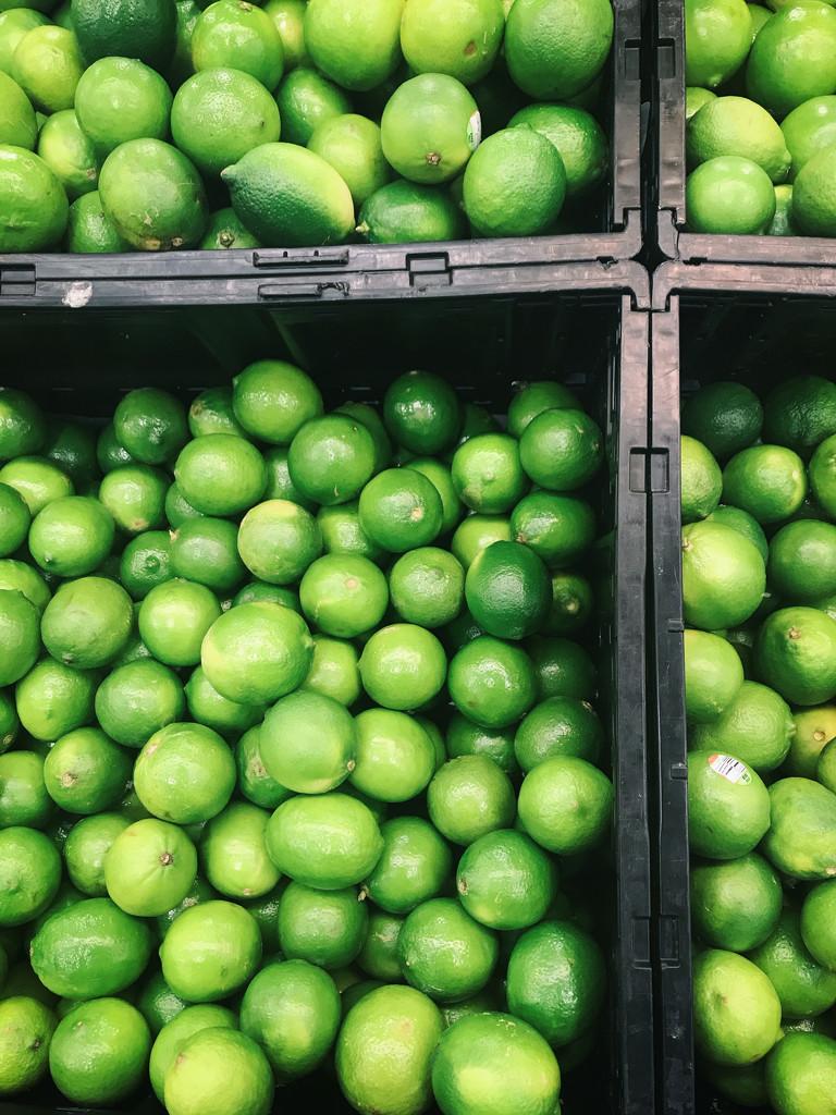 107 - Limes! by emrob