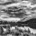 Drama Over the Pond by photograndma