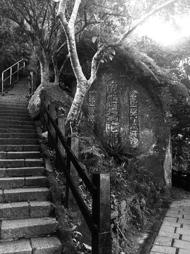 Elephant Mt hike Taipei  by yoland
