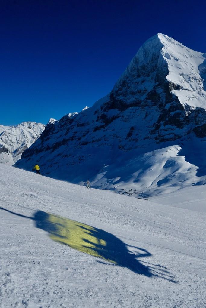 Grindelwald 1 by vincent24