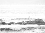 1st Feb 2021 - Sunset High Key Surfing