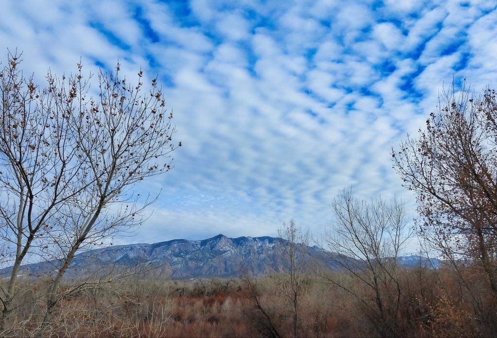 Pretty Sky by janeandcharlie