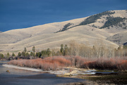 2nd Feb 2021 - Late Afternoon In Montana