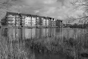 2nd Feb 2021 - townhouses beside the river FoR 2021