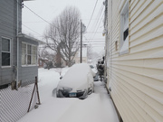 2nd Feb 2021 - Half way through the snow storm.