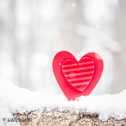 2nd Feb 2021 - Month Of Hearts