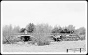 3rd Feb 2021 - Atcham Bridge