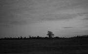 2nd Feb 2021 - Night landscape