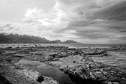 1st Feb 2021 - Kaikoura coastline uplifted