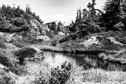 3rd Feb 2021 - Mountain Pond