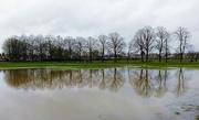 3rd Feb 2021 - Flood in the park