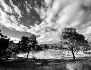 4th Feb 2021 - The pond
