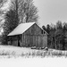 February Words - Old by farmreporter