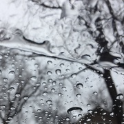 2nd Feb 2021 -  Composition with rain and wind shield