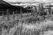 5th Feb 2021 - Alaska Landscape