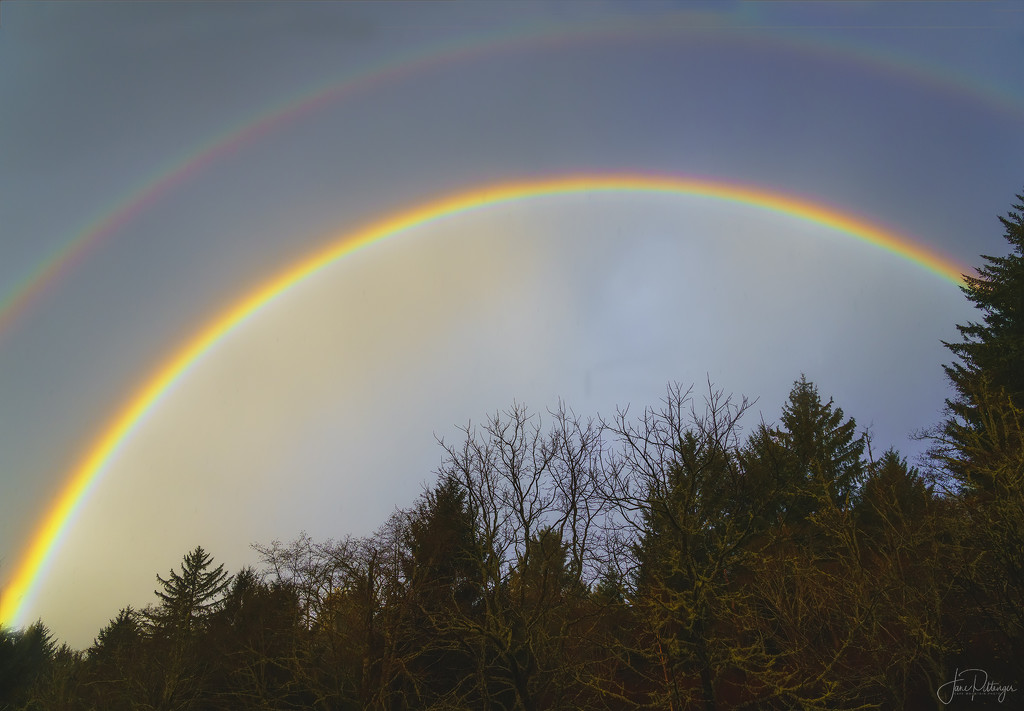 This Morning's Rainbow by jgpittenger