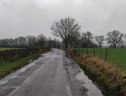 2nd Feb 2021 - A walk in the rain