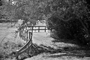 2nd Feb 2021 - Winding Fence