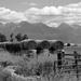FOR2021 - Scenic Rural Montana by bjywamer