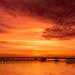 Another St John's River Sunset! by rickster549