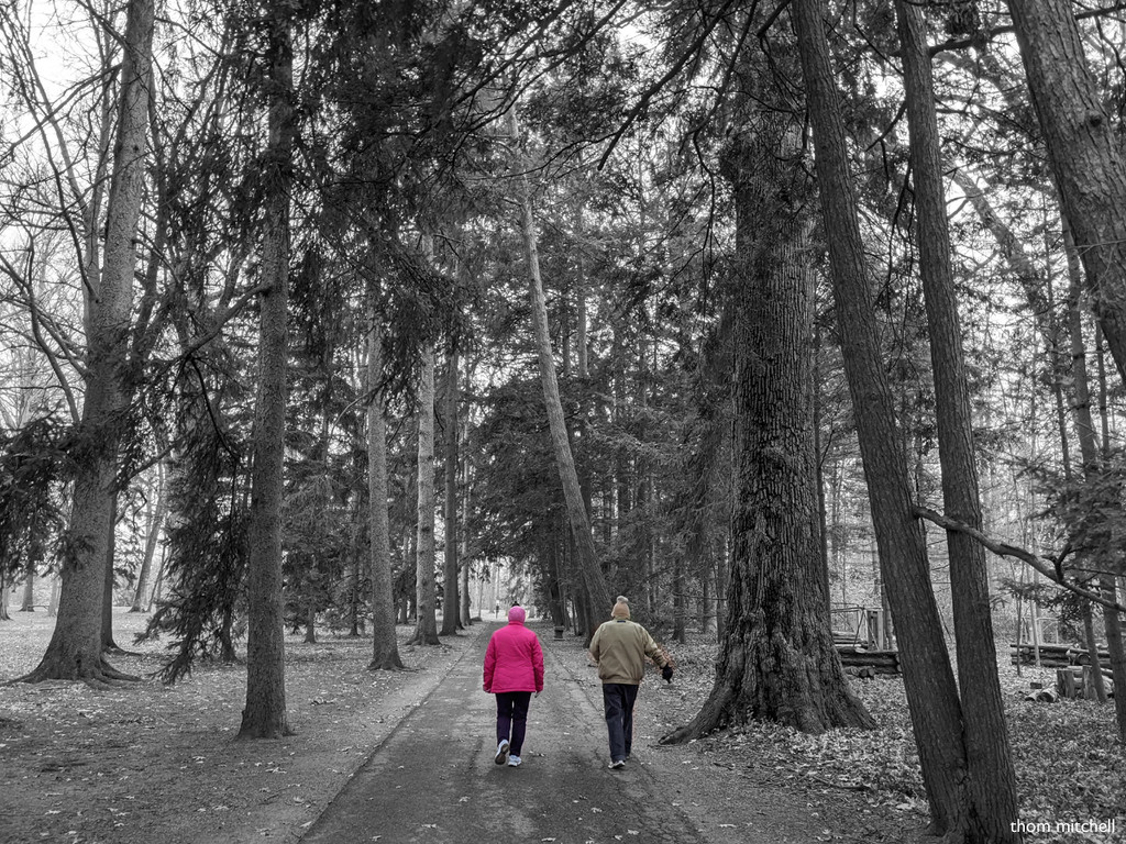 Selective coloring 2 [Travel-day Filler]  by rhoing