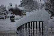 5th Feb 2021 - More Snow