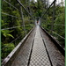 On the bridge by dide