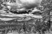 6th Feb 2021 - Jasper National Park Landscape