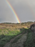 5th Feb 2021 - The path to the rainbow