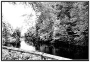 6th Feb 2021 - Along the Severn