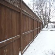 5th Feb 2021 - Fences #1: By my Side Garden